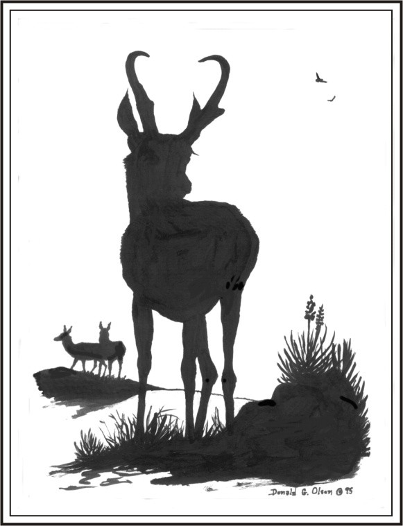 THE PRONGHORN INK AND BRUSH 1995
